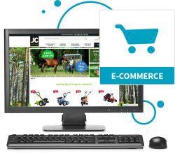 capture d'écran site e-commerce